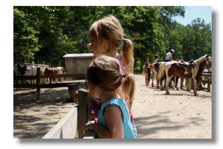 brown county state park pony rides